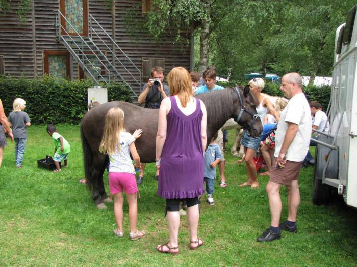 horses are fun on Camping Toodlermillen Tadler Luxembourg