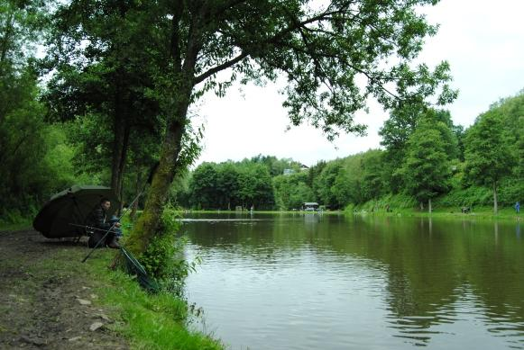 enjoy fishing on Camping Reilerweier Clervaux Reuler Luxembourg