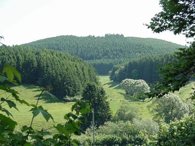 splendid nature of the Luxembourg Ardennes around Camping Woltzdal Maulusmuhle Luxembourg